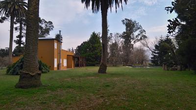 Casa Quinta C/ 6 Hectáreas En Veronica, Punta Indio.
