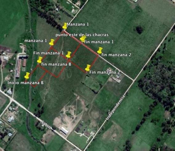 Terreno En Venta En San Felipe Esq. Pujol Tandil - Alberto Dacal Propiedades