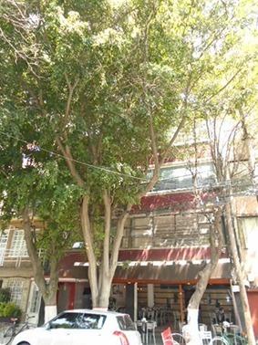 Edificio Comercial, Venta, Cuauhtémoc
