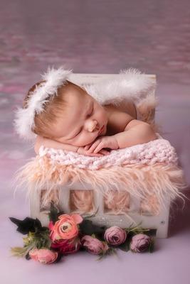 Sesion De Fotos Newborn - Recien Nacidos