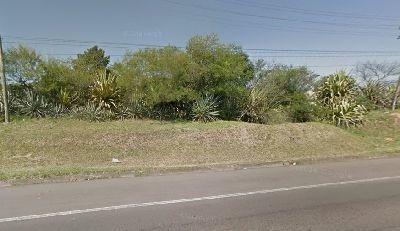 Terreno Em Viamópolis - El50867119