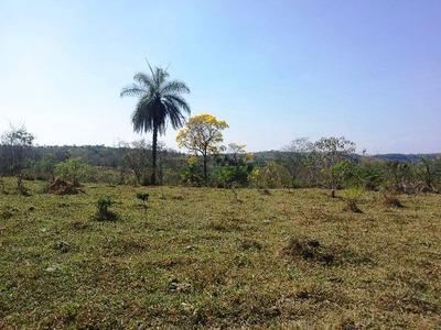 Fazenda À Venda, Jaboticatubas/mg - 411