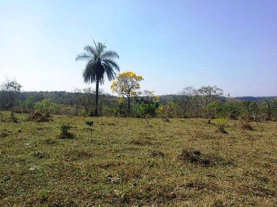 Fazenda À Venda, 1 Quarto, Centro - Jaboticatubas/mg - 411