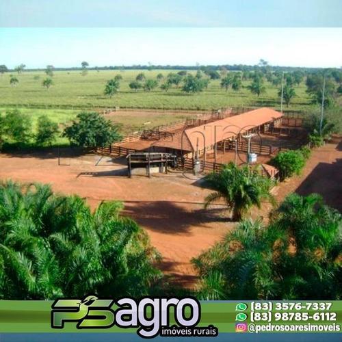 Imagem 1 de 10 de Fazenda Com 34.000 Mil Hequitares Valor 350.000 Milhões  De Reais. - Fa0062