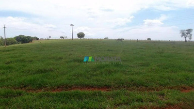 Fazenda Lavouras 242 Ha Região Piumhi (mg) - Codigo: Fa0161 - Fa0161