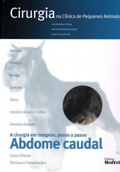 Cirurgia Na Clínica De Pequenos Animais - Abdome Caudal