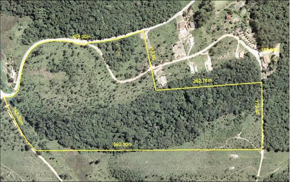 Sitio Bairro Das Pedras - Capoavinha Mairipora Sp Brasil - 1815
