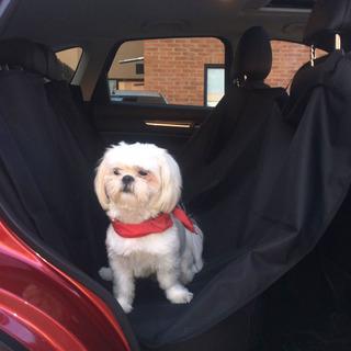Protector De Carro Para Mascotas - Unidad a $59900