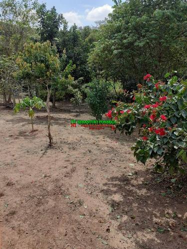 Imagem 1 de 15 de Chácara 6 Mil M² Em Cachoeira De Minas - Mg - 1999
