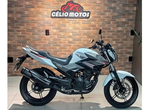 Imagem 1 de 6 de Yamaha Fazer 250 Blueflex