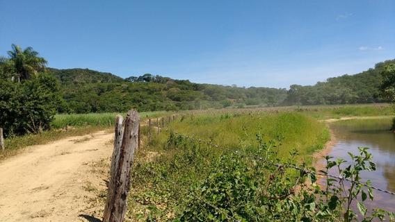 Vendo Fazenda 230 Ha Em Montes Claros-mg