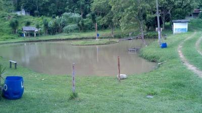 Sítio Rural Para Locação, São Roque, Araçariguama. - 1996