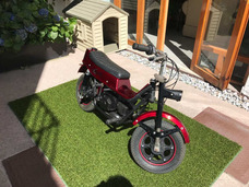 Carabela Pony Matic 60 Cc