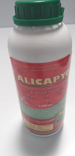 Insectida Organico / Hidrolato De Ajo-aji 1 Litro. Alicapyo
