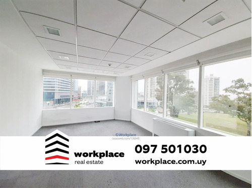 Imagen 1 de 21 de Oficina Alquiler - World Trade Center - Wtc