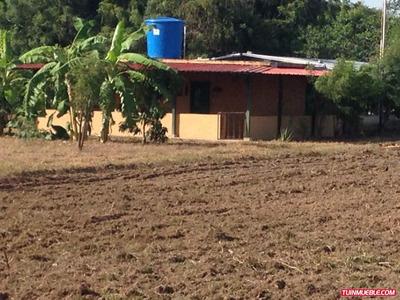 Haciendas - Fincas En Venta 04128901630