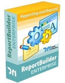 Reportbuilder - Editions Enterprise D7.d2007.xe-xe8