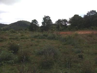 Terreno Rustico En Venta En La Localidad El Manzanillo