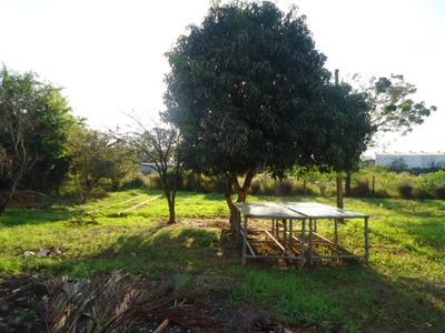 Sítio Em Zona Rural - Umuarama - 6566239954534400