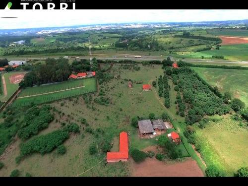 Imagem 1 de 7 de Sitio Na Rodovia Castelo Branco - St00077 - 68238939
