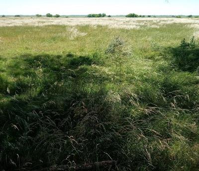 Vendo Terreno Zona La Plata Titular