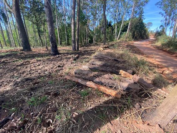 08d Vendo Terreno Próximo De São Roque