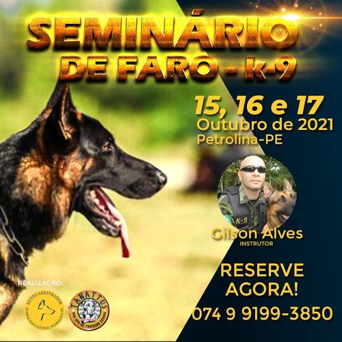 Imagem 1 de 2 de Seminário De Faro K9