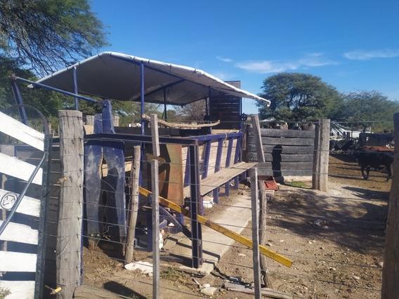 Alquilo Feedlot En Localidad De San Agustín P/ 500animales