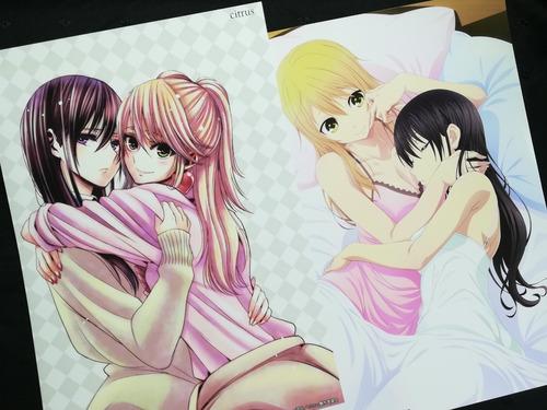 Posters A3 29x42cm Anime Citrus #1 / Niponmania