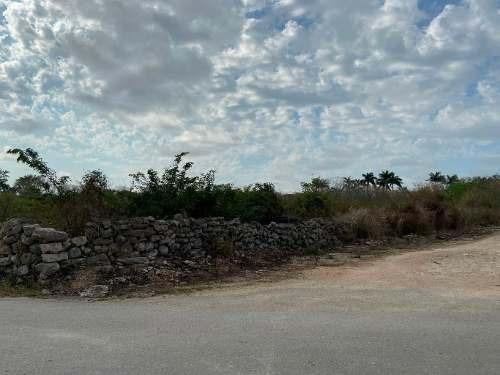 Terreno Ideal Para Desarrollo Habitacional O Amplia Residencia En Hunucma, Yuc