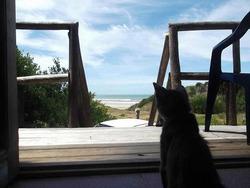 Barra Del Chuy Uy Alquilo Frente Al Mar O Bosque Wi-fi Dtv
