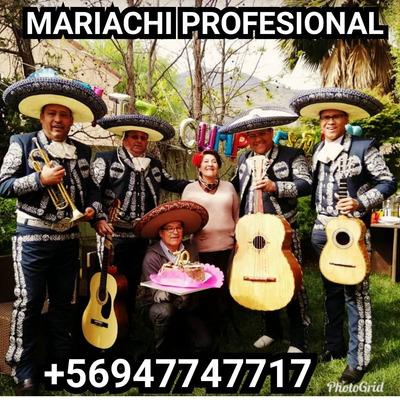 Mariachis A Domicilio Desde 35mil Mariachi Show