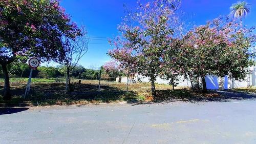 Imagem 1 de 7 de Terreno À Venda Em Centro - Te017034