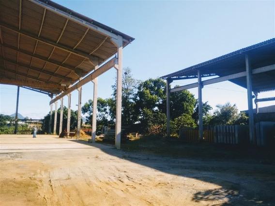 Galpões Industriais Próximo A Rodovia Leste-oeste (cariacica) - Nva1424