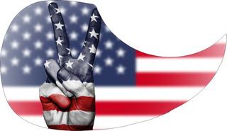 Escudo Palheteira Resinada Violão Aço Peace Usa