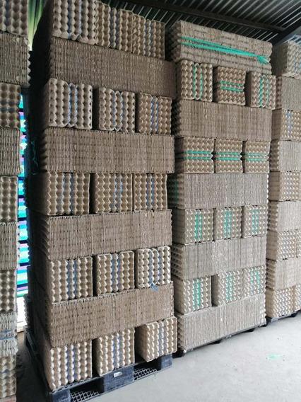 Cubetas Huevos 30 Unidades Pacas De 102 Mediana Y Universal