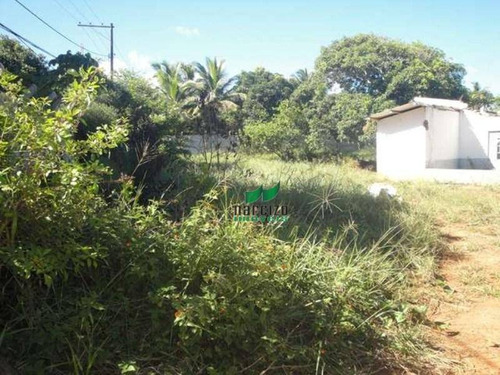 Terreno Residencial À Venda, Pituaçu, Salvador - Te0162. - Te0162