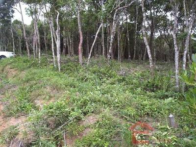 Venda - Terreno Em Condomínio Calla Piccola / Ibiúna/sp - 4132