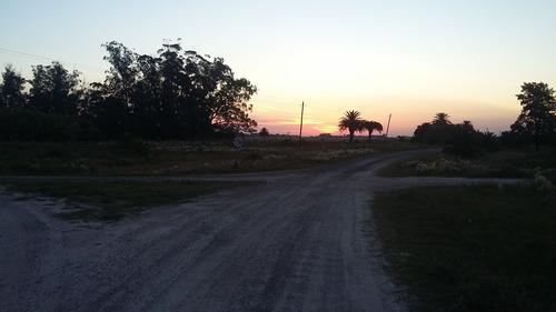 Imagen 1 de 2 de Campo En Venta 12,5 Has En Punta Indio