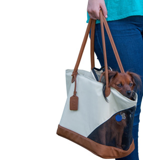 Pet Gear R & R Tote Bag For Cats And Small Dogs, Sand