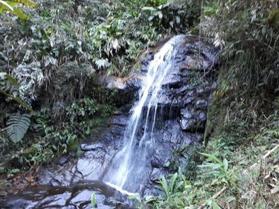 Fazenda Em Santa Rita Do Jacutinga - Mg - 165 Ha Com Muita Água - Mata Atlântica - Vocação Gado - Criação De Trutas - Ecoturismo. - 2831