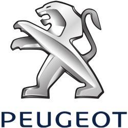 Frente Lado Derecho Ala Soporte Soporte Para Peugeot Partner 7120FP Original