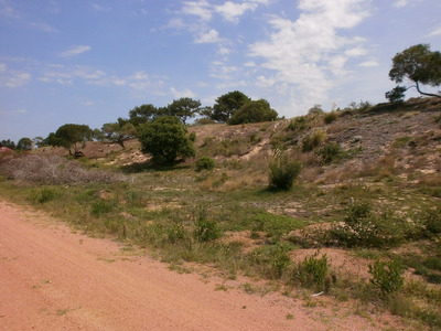 Terreno Grande En Maldonado P Ballena Alto Playa Chihuahua