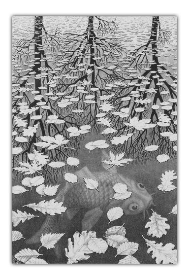 Poster Grande M C Escher 60x90cm Three Worlds - Decorar Sala