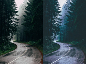Lightroom Presets Foresta