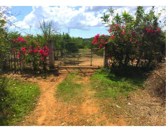 Finca De 29 Tareas Agrícola En San Cristóbal