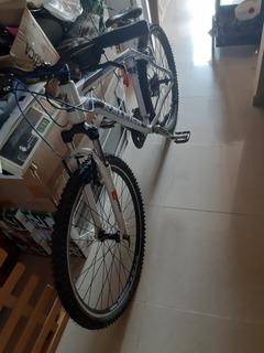 Bicicleta Raleight