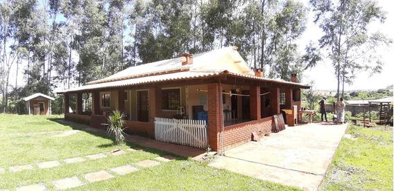 Chácara Rural Em Ibiporã - Pr - Ch0007_gprdo