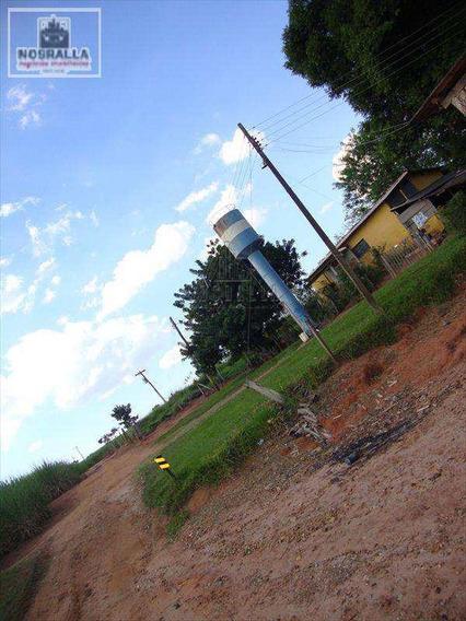 Sítio Em Jaboticabal Bairro Área Rural De Córrego Rico - V313900
