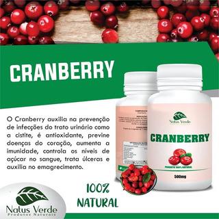 Kit 6 Potes Cranberry 500mg 100caps Total 600 Capsulas